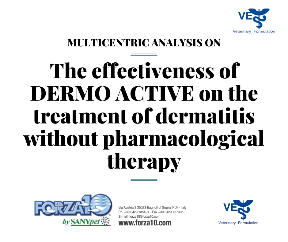 Исследование эффективности корма FORZA10 DERMO ACTIVE, при кожных заболеваниях без применения лекарственной терапии