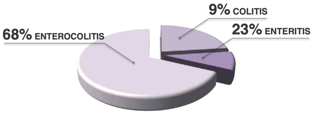 Клиническое исследование корма INTESTINAL COLION разделение по болезни