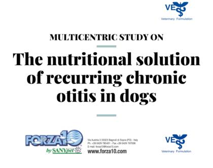 Решение рецидивирующего хронического отита у собак