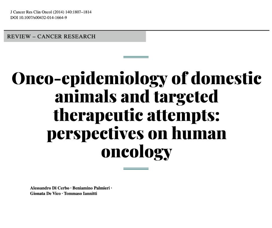 Сравнение онкоэпидемиологии у людей и животных