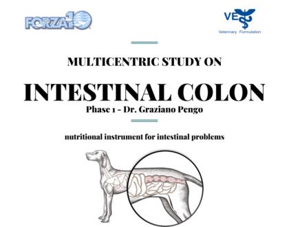 Клиническое исследование корма INTESTINAL COLION