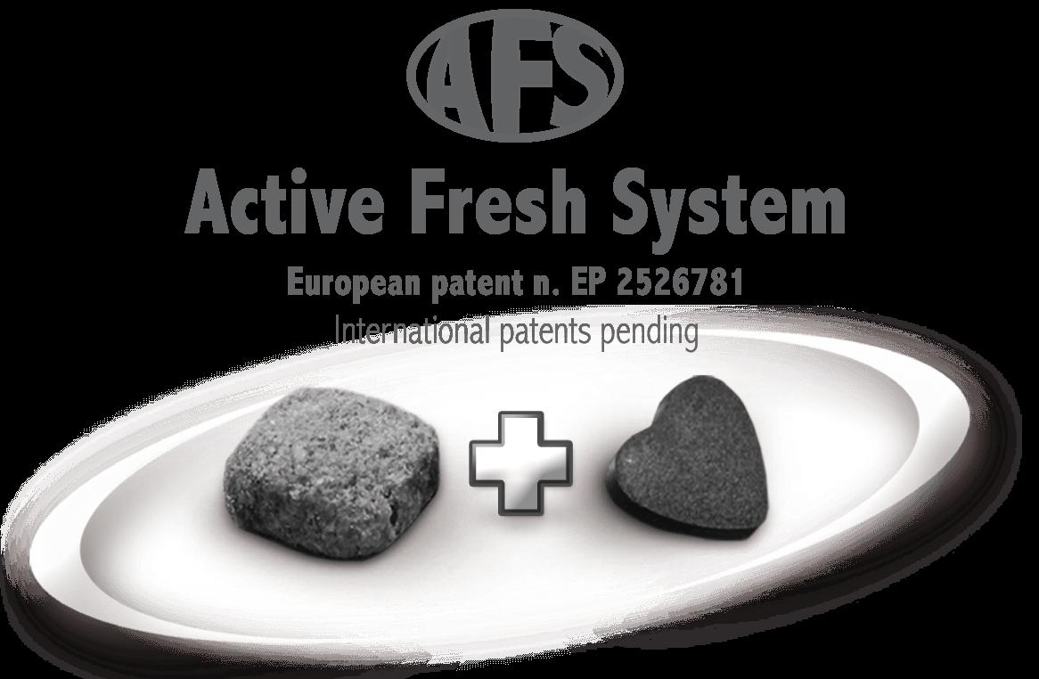 FORZA 10 запатентованная технология AFS