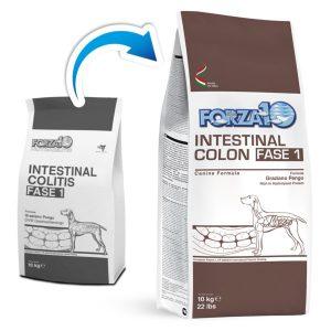 FORZA 10 Active Intestinal Colon фаза 1 старый и новый мешок