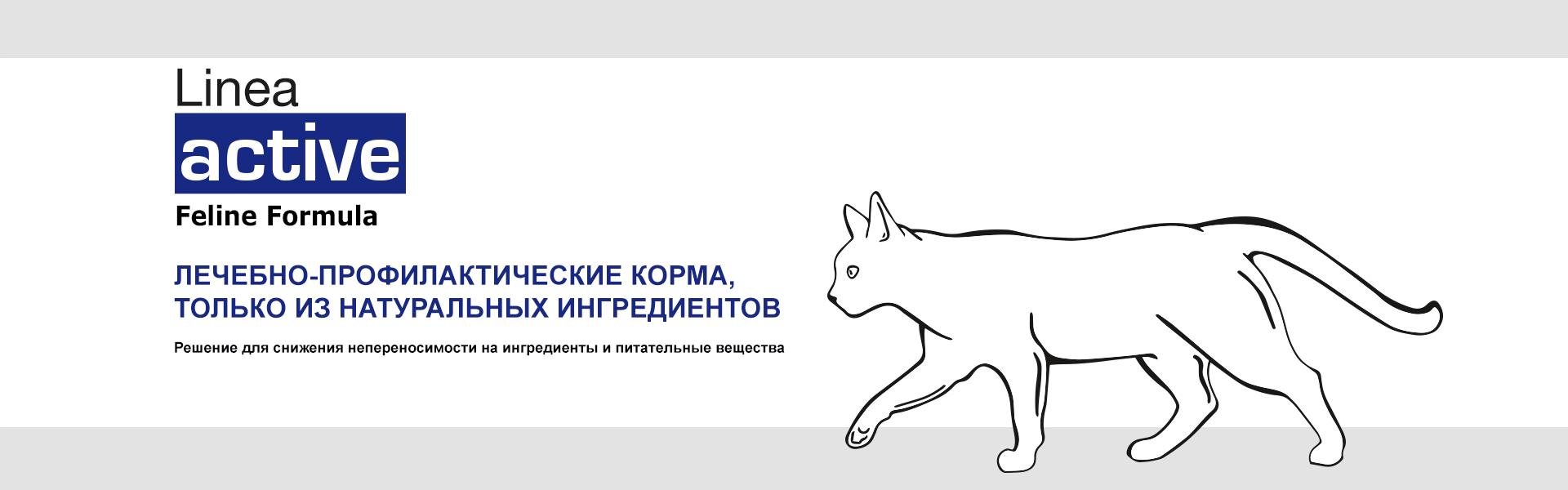 Баннер Форза10 линия АКТИВ кошки