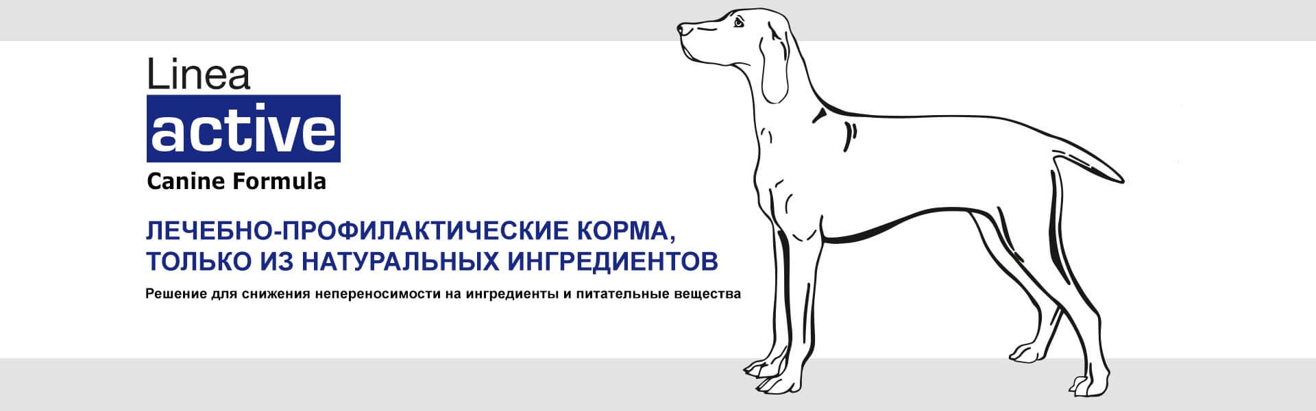 Банер линии FORZA10 ACTIVE для собак