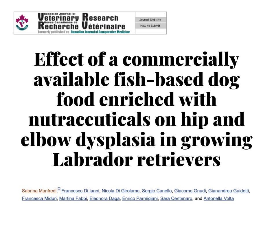 Влияние диеты PUPPY CONDRO, на дисплазию тазобедренных и локтевых суставов у растущих лабрадор-ретриверов