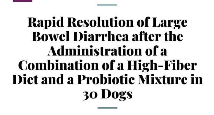 """Научная статья """"Быстрое разрешение хронического колита у собак"""""""