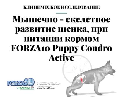 Клиническое исследование Мышечно-скелетное развитие щенка, при питании кормом FORZA10 Puppy Condro Active