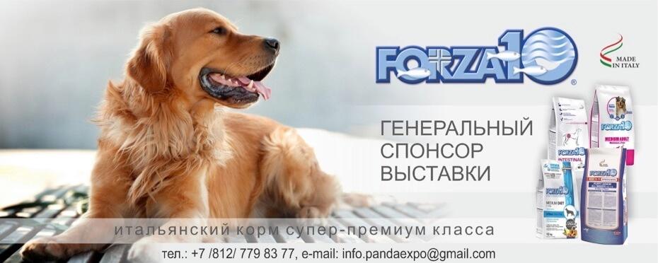 Forza10 Генеральный спонсор выставки Гран При Санкт-Петербург 2021
