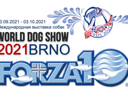 Международная выставка собак в Брно, Чехия - World Dog Show 2021 Brno